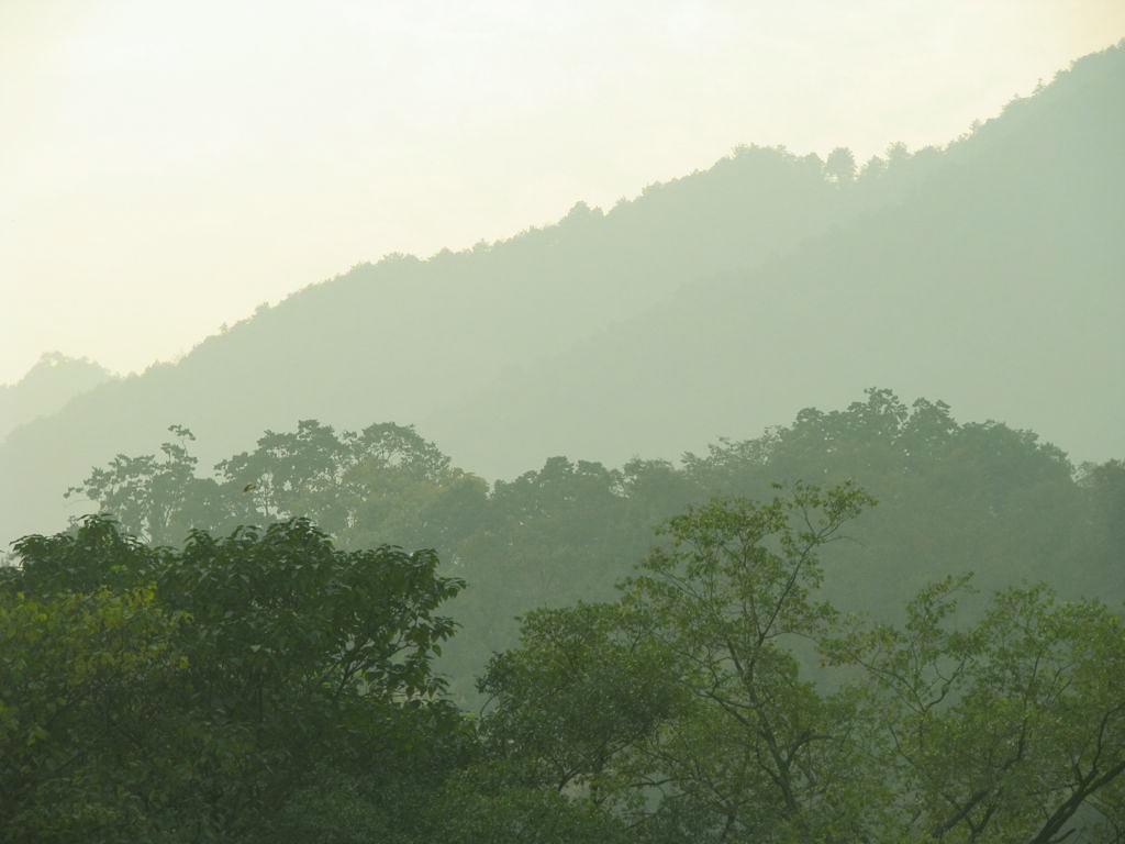 Hangzhous grüner Westen