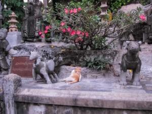 Bangkok_2010.2-24