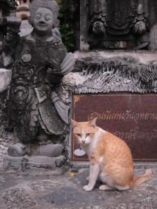 Bangkok_2010.2-25