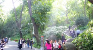Guangzhou-2010-Wald
