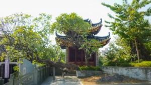 Guangzhou-2010-m-65