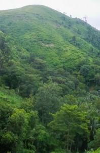 Kawthaung-Mountain-4