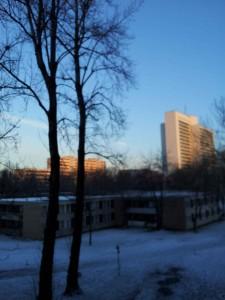 Wohnheimfenster-41