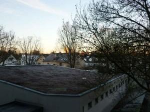 Wohnheimfenster-8